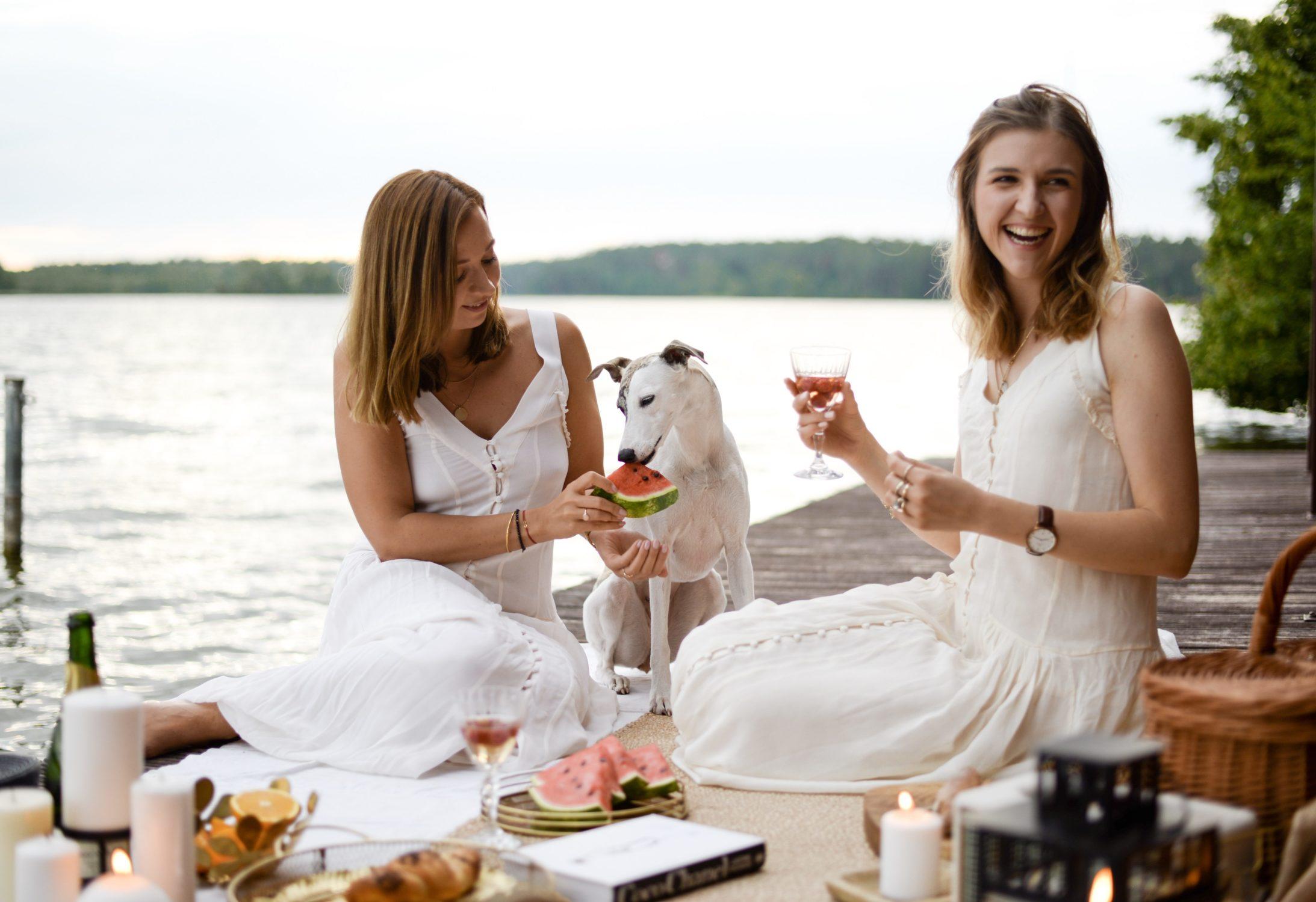 piknik nad polskim jeziorem
